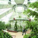 Центральный Ботанический Сад фотография 11