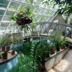 Центральный Ботанический Сад фотография 10