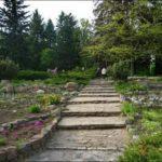 Центральный Ботанический Сад фотография 12