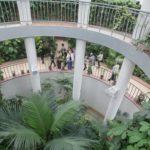 Центральный Ботанический Сад фотография 13