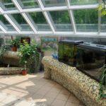 Центральный Ботанический Сад фотография 17