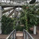 Центральный Ботанический Сад фотография 16