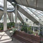 Центральный Ботанический Сад фотография 18