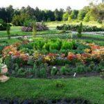 Центральный Ботанический Сад фотография 2