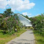 Центральный Ботанический Сад фотография 22