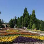 Центральный Ботанический Сад фотография 5