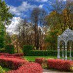 Центральный Ботанический Сад фотография 6