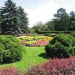 Центральный Ботанический Сад фотография 9