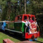 Детская железная дорога фотография 5
