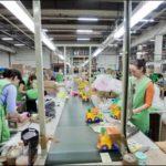 Производство и упаковка игрушек