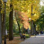 Гомель парк фотография 6
