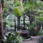 Гомель зимний сад фотография 10