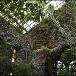 Гомель зимний сад фотография 3