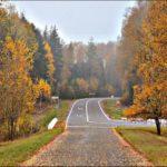 Дорога в Хатынь