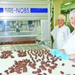 Сортировка конфет на конвейере