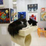 Музей кота фотография 6
