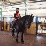 Всадник в конюшне