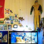 Океанариум Открытый океан фотография 14