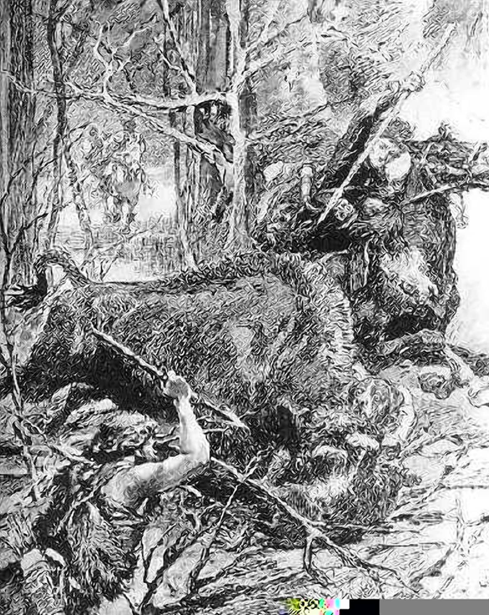 Ягайло охотится на зубра