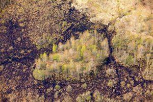 Белорусские болота очищают Европу