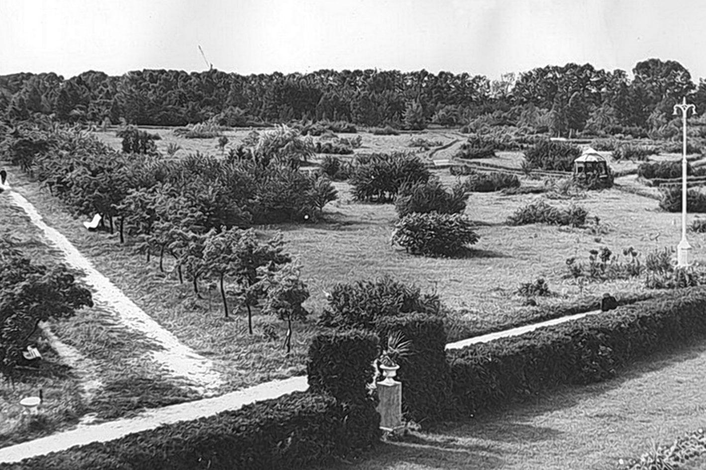 Минский ботанический сад в 1936 году