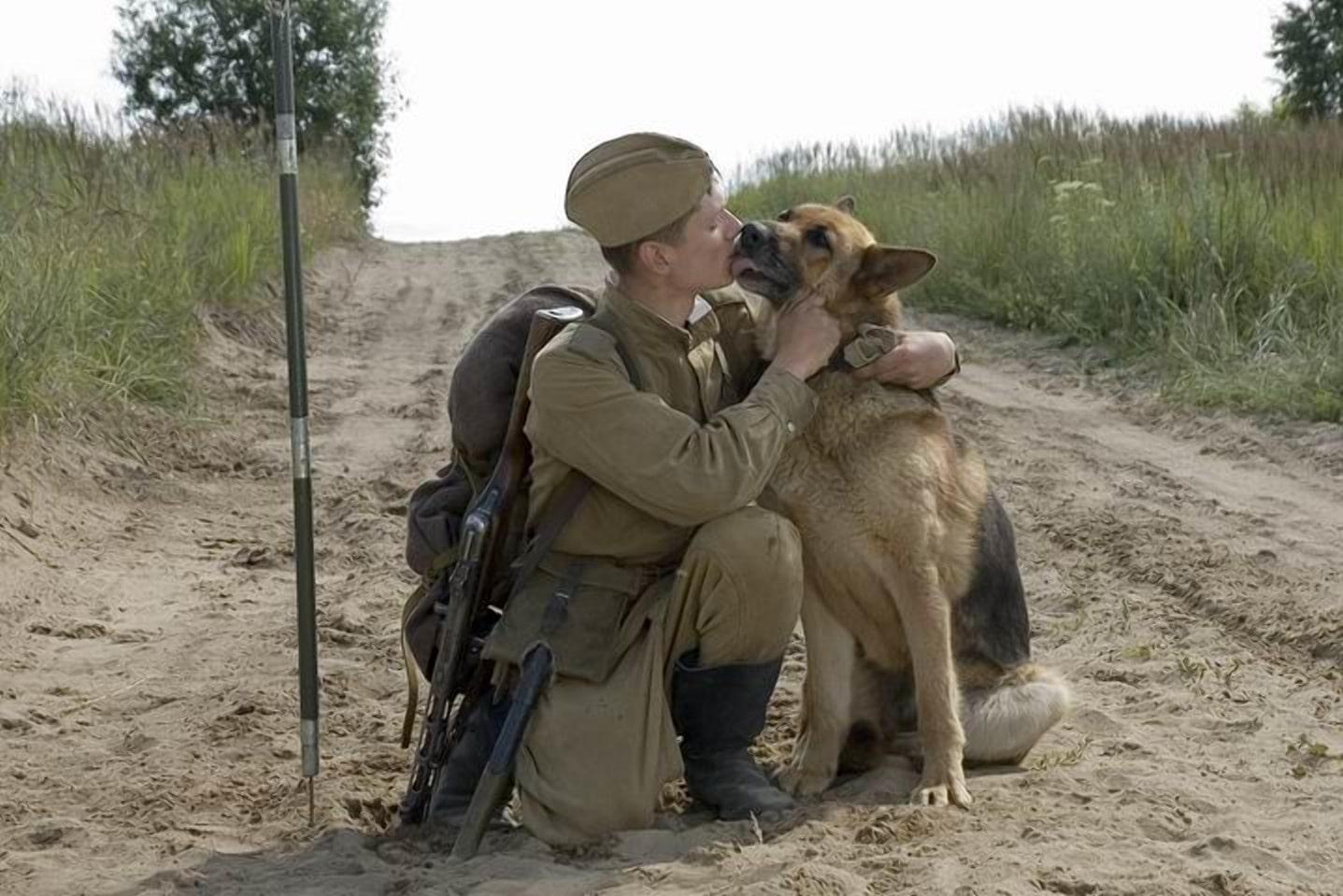 Фильм про сапера и собаку