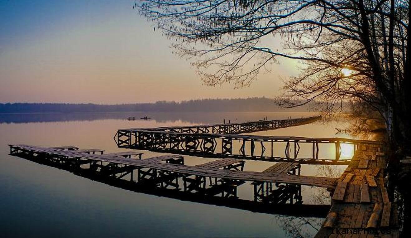 Озеро в Пуще