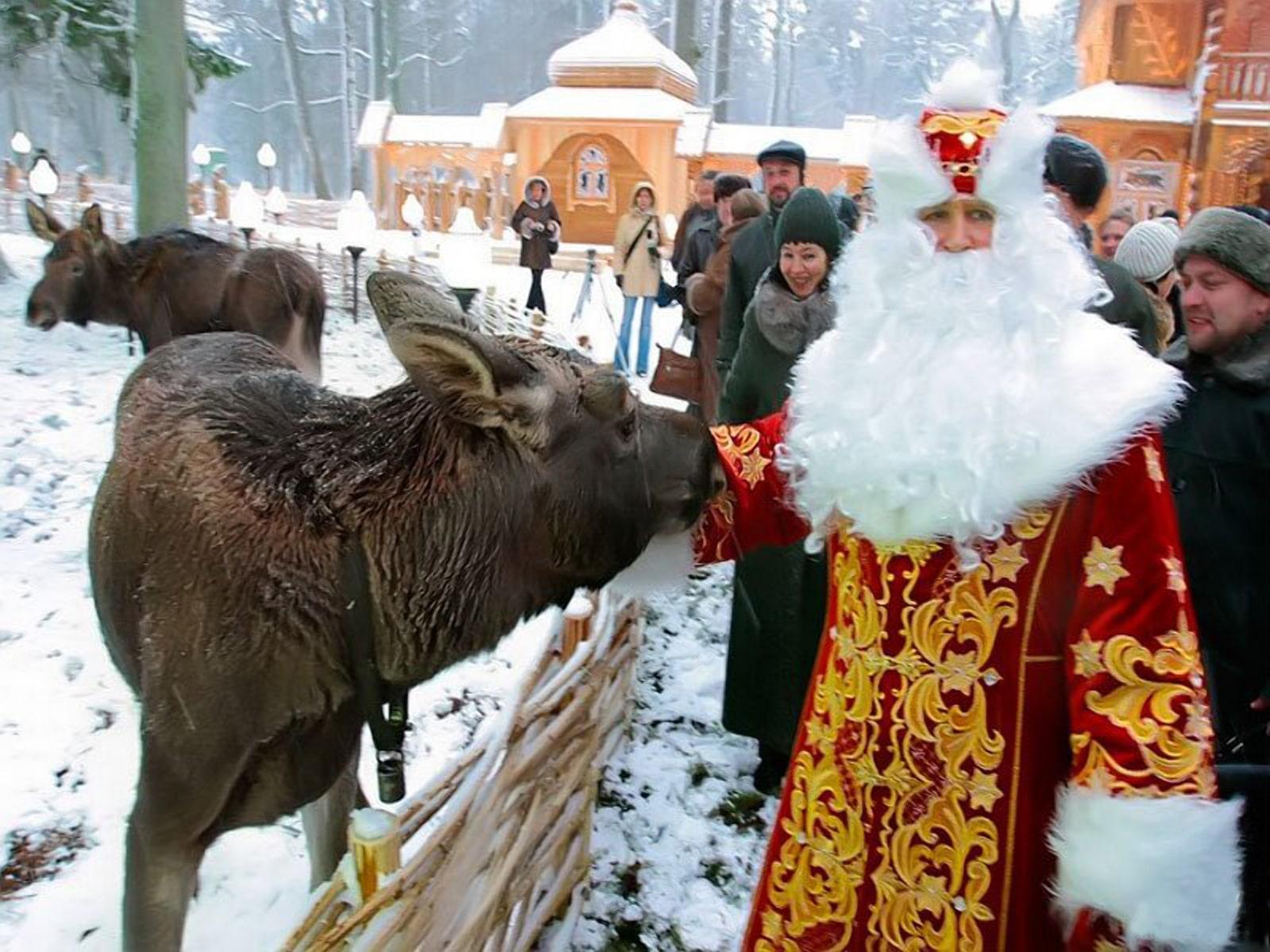 Поездки в Беларусь зимой