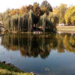 Озеро в парке