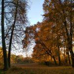 Осень а Жиличах