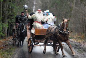 Зюзя Поозерский - ищет снег и холод в Беларуси