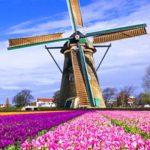 Корпоративные туры в Голландию