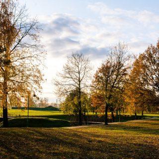Лесопарк Буйничского поля