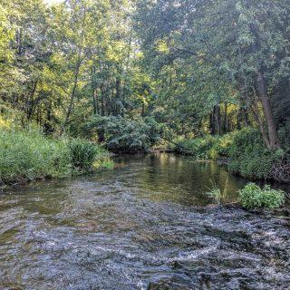 Экскурсия в Нарочанском парке