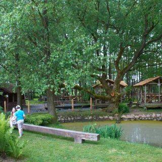 Парк в дудутках