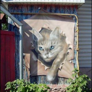 Гомель, граффити