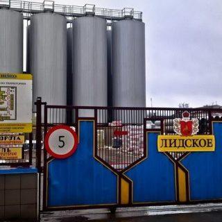 Лидское пиво, ворота