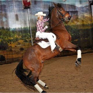 Демонстрация мастерства верховой езды