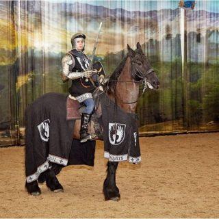 Рыцарь верхом на лошади